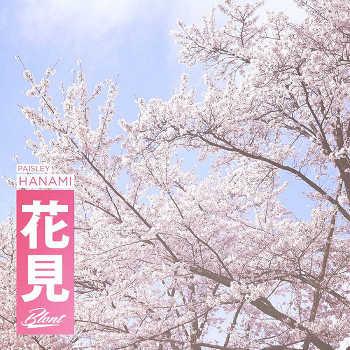 Paisley - Hanami