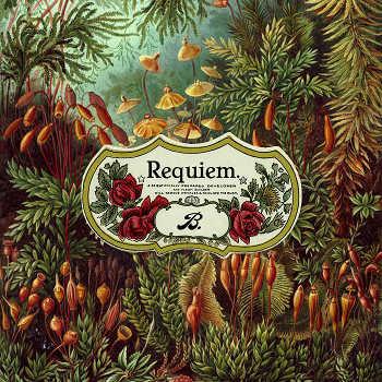 Braeden Bailey. - Requiem.