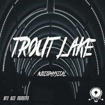 Audiophysical - Trout Lake, BSM#4