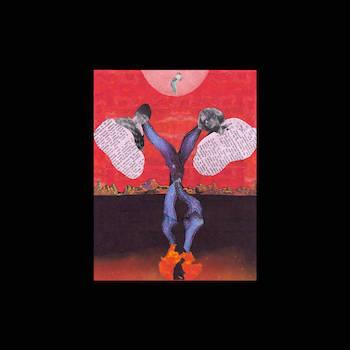 Chris Orrick The Lasso feat. Quelle Chris - Specimens