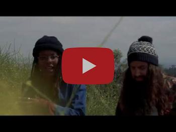 MXXWLL feat. John Givez, Rae Khalil, Carrtoons - Light Turn Green video