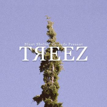 Blunt Shelter Records - Treez