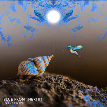 BLUE FRONT HERMIT - Into Now