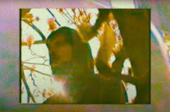 Spectacular Diagnostics feat. Immi Larusso - Alright video