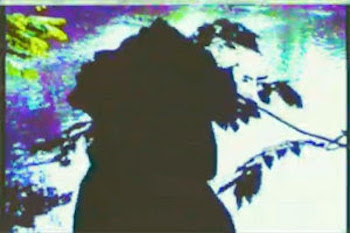 Spectacular Diagnostics feat. Pertrelli Purple - Fish video